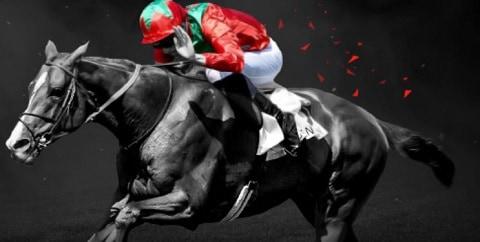 bet365 Best odds Guaranteed - Horses